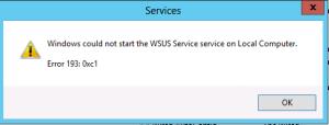 wsus service error